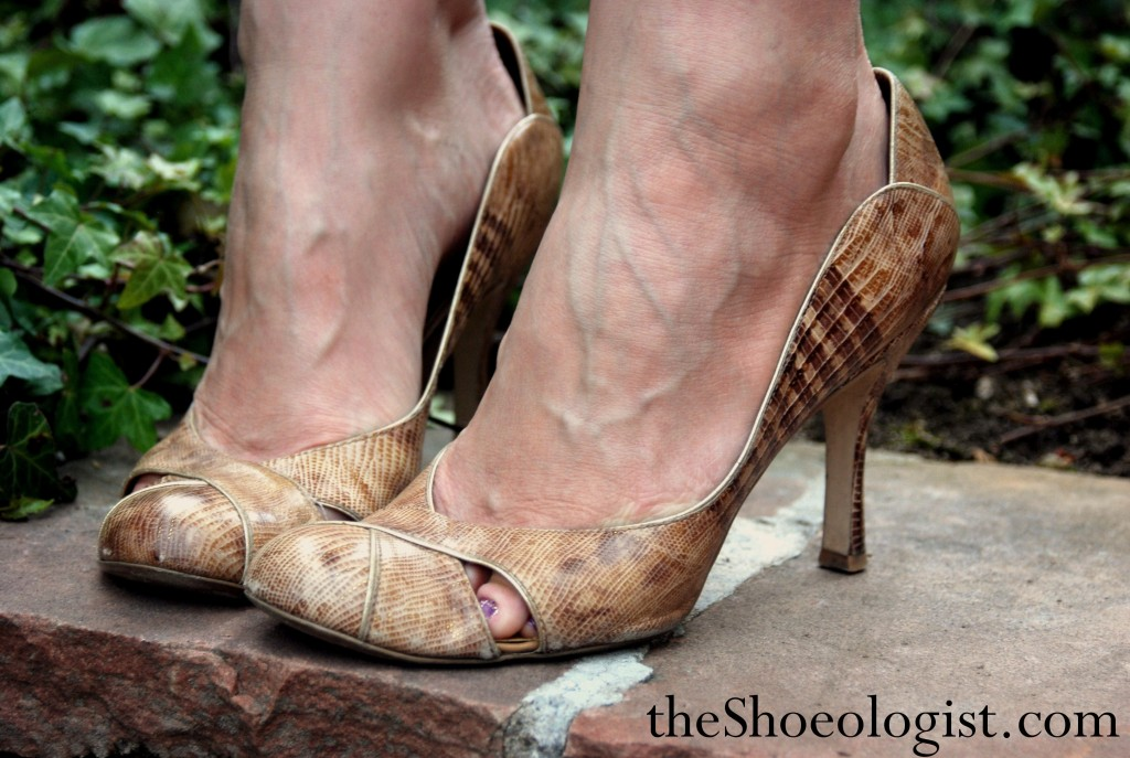 The Shoeologist Study Of Stilettos Heels And Fashion